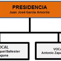 Organigrama Asesora presidente