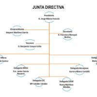 Organigrama Junta directiva