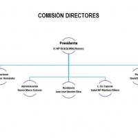 Organigrama comisión de directores