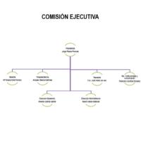 Comisión ejecutiva 2019