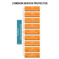 Comisión nuevos proyectos 2019-1