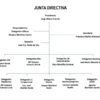 Junta directiva 2020